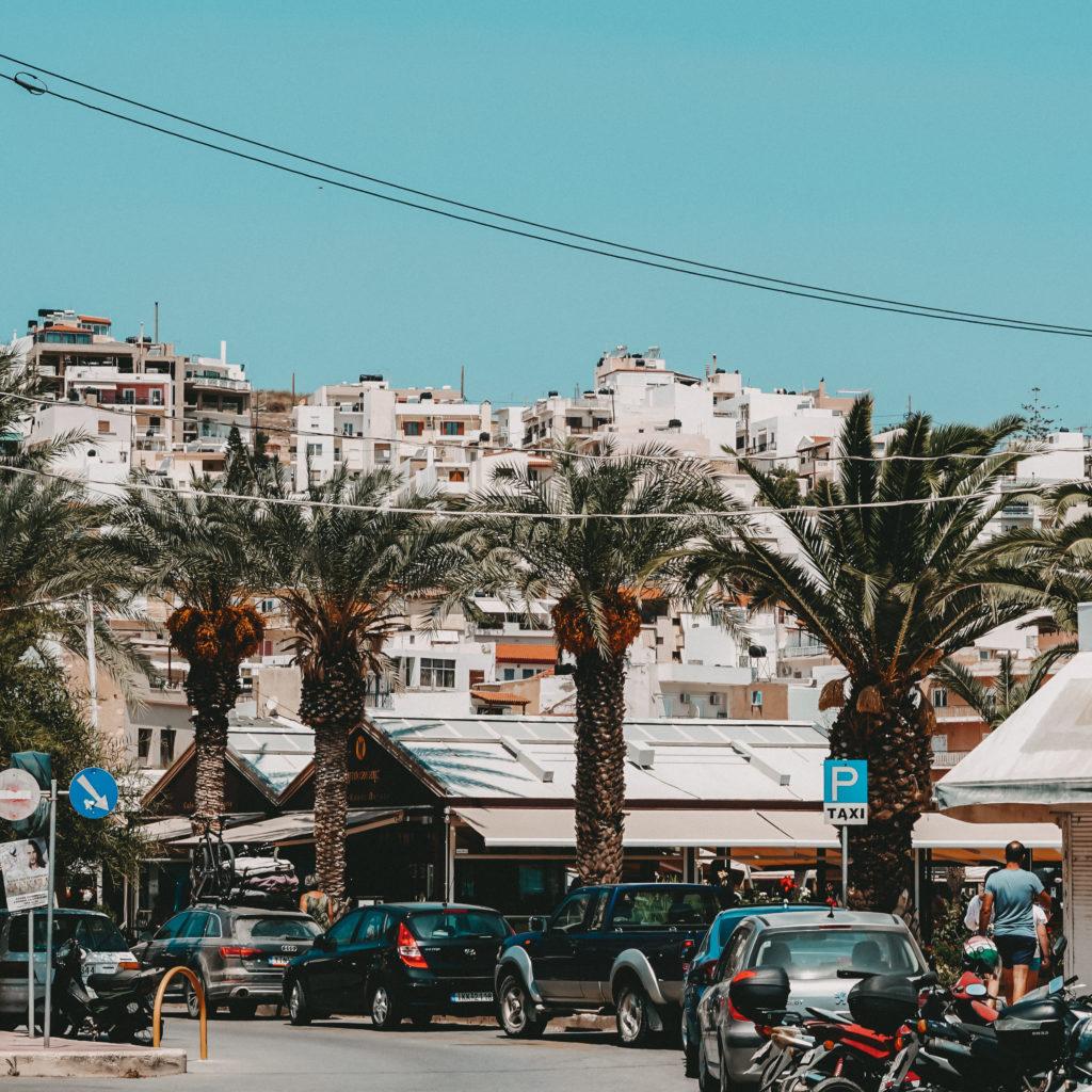 Palmen am Straßenrand in Sitia